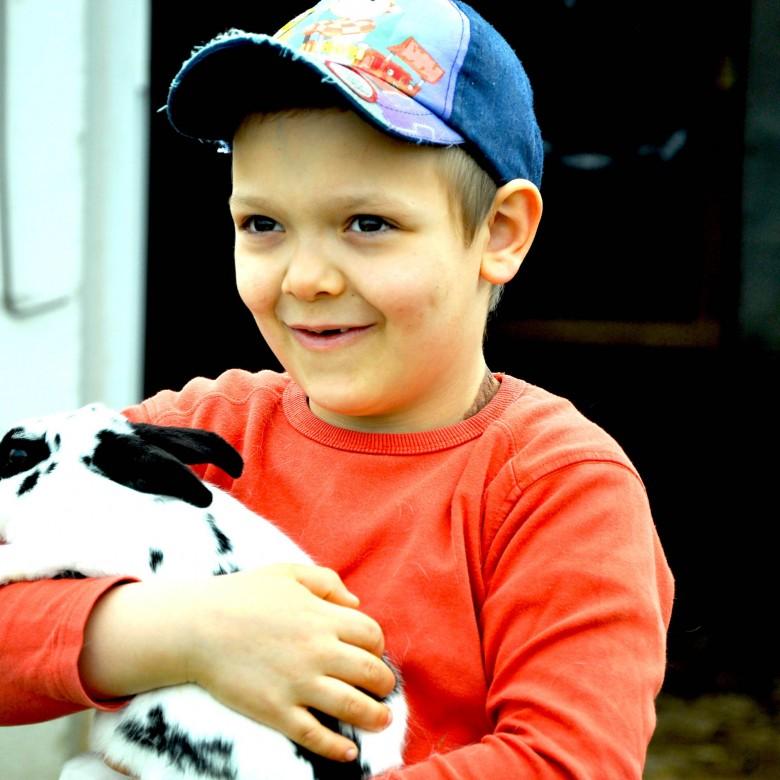Verantwortung durch Kontakt mit Tieren